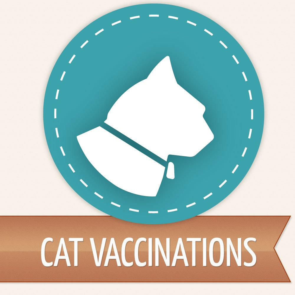 Cat Vaccines ONLY Cats Already Altered