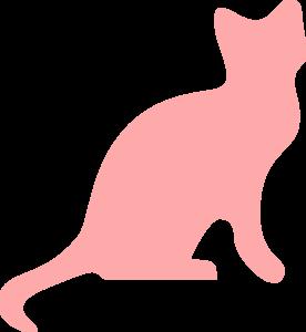 Nov 8 Cat Spay ( 3 lb or larger)