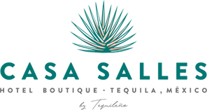 Casa_Salles_Logo_Wordmark_Colour.png
