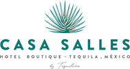 Casa_Salles_Logo_Wordmark_Colour.png