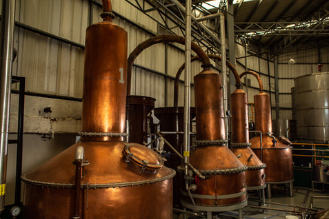 2020_Distillery_CopperStills_004.jpg