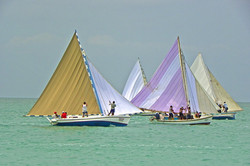 Consejo Shores, Sarteneja Boats