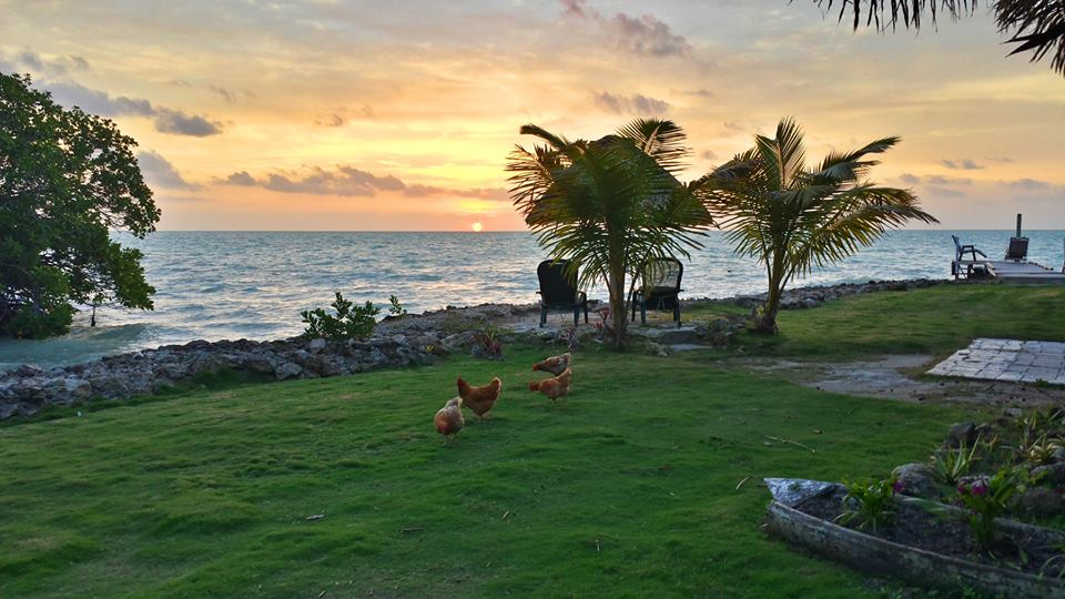 Consejo Shores Morning, Belize