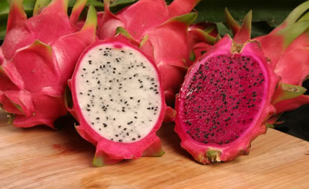 Pitaya Fruit - Consejo Shores, Belize