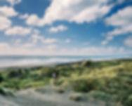 ocean-beach-kawhia-new-zealand.jpg