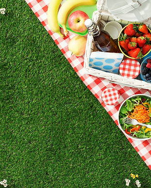Summertime picnic setting on the grass w