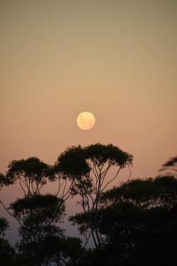 moonrise over Koonyum