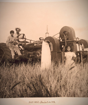 my paternal grandfather, Jose Cárdenas in the rice fields of the area