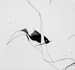 olivier marin 8