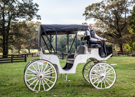 Ogletree Estates Carriage _ Photography by Aura Exposures Photography.jpg