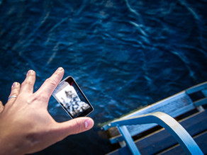 3 Things Dropping My Phone In A Pond Taught Me About Team Management