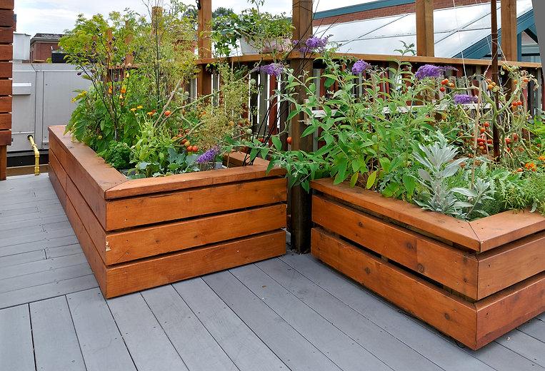 Attractive raised garden beds