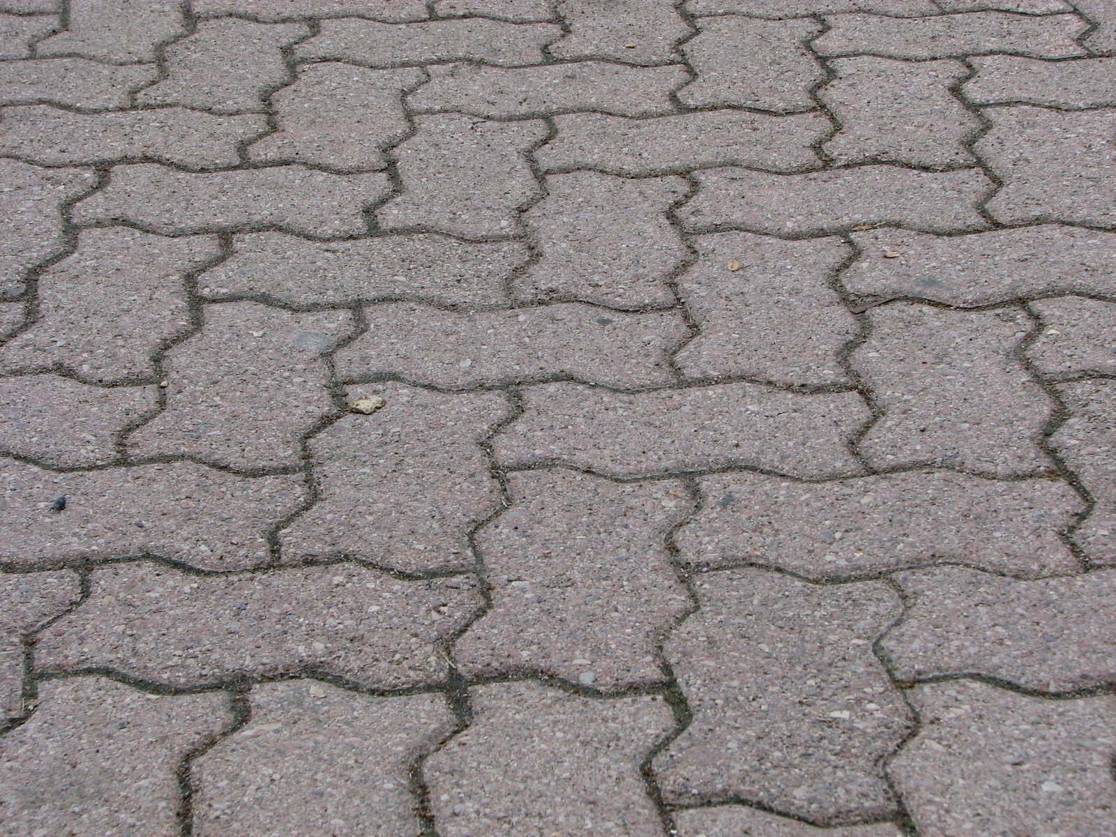 brick-path-1192645