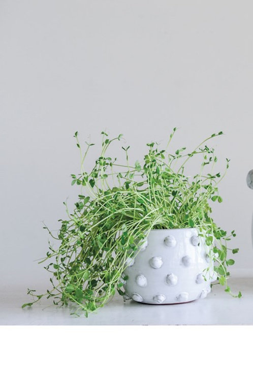 White Terra Cotta Raised Dot Planter