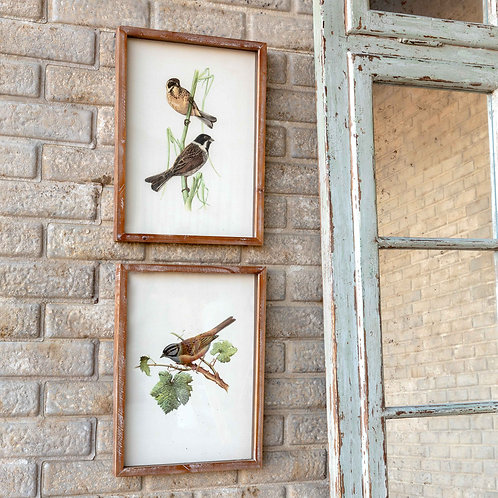 Song Bird Wall Art Set