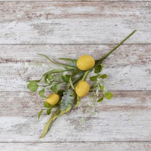 Lemon & Wild Flower Stem