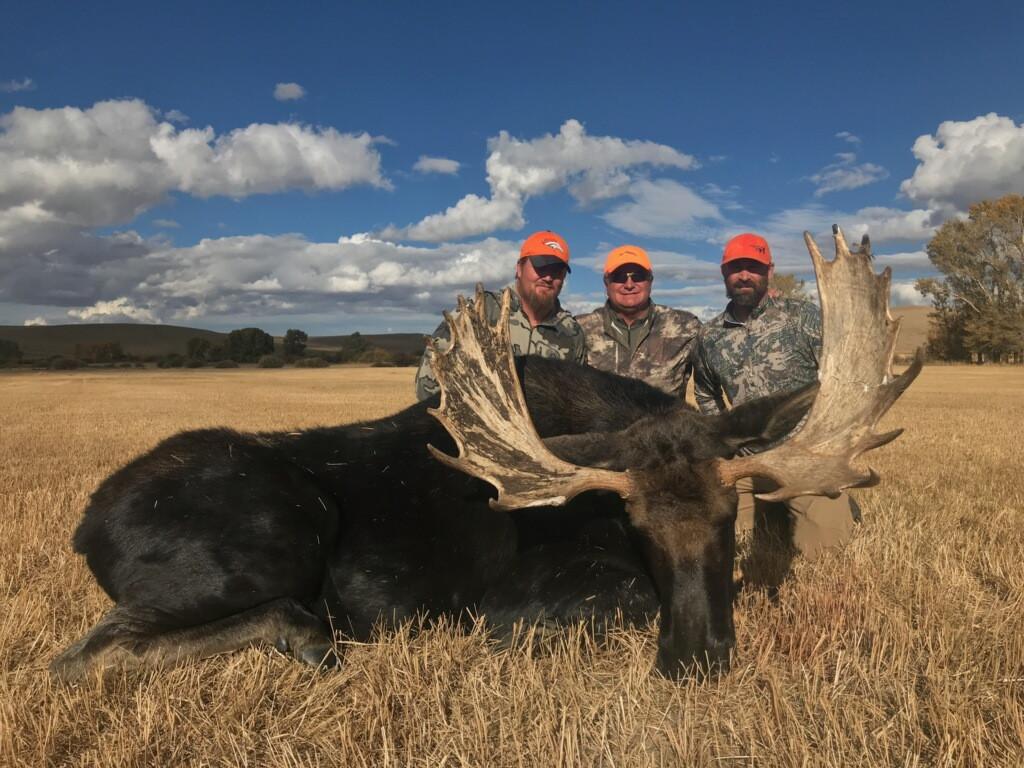 Mike's moose.jpg