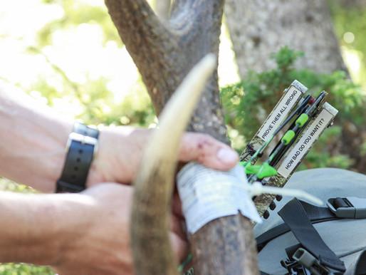 5 Proven Elk Hunting Tactics To Increase Success