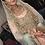 Thumbnail: Shan -e- Jahan Grand Bridal Set