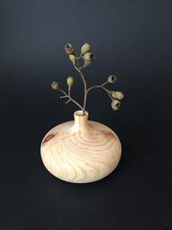 cypress pine dry bud vase