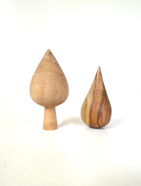 cotoneaster, camphor laurel