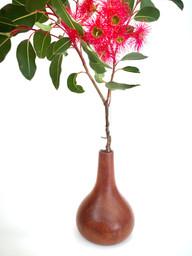 mahogany test tube vase