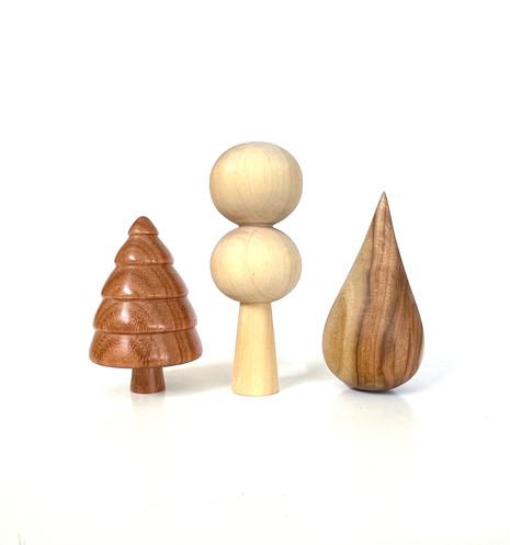 redgum, tulipwood, camphor laurel