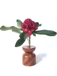 redgum vase with waratah
