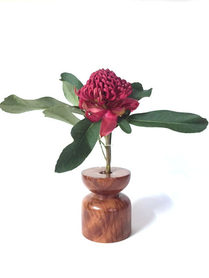 redgum vase with waratah