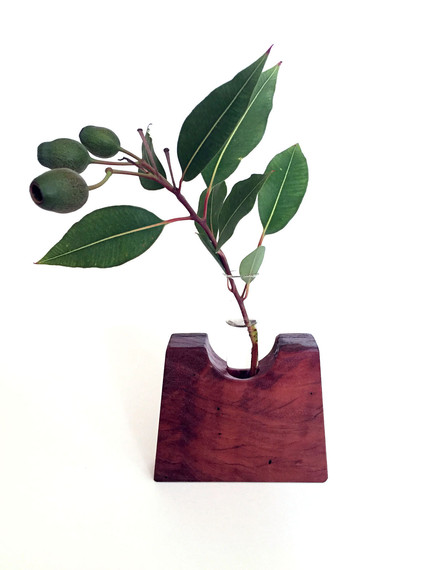 redgum test tube vase