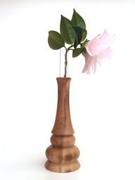 cotoneaster test tube vase