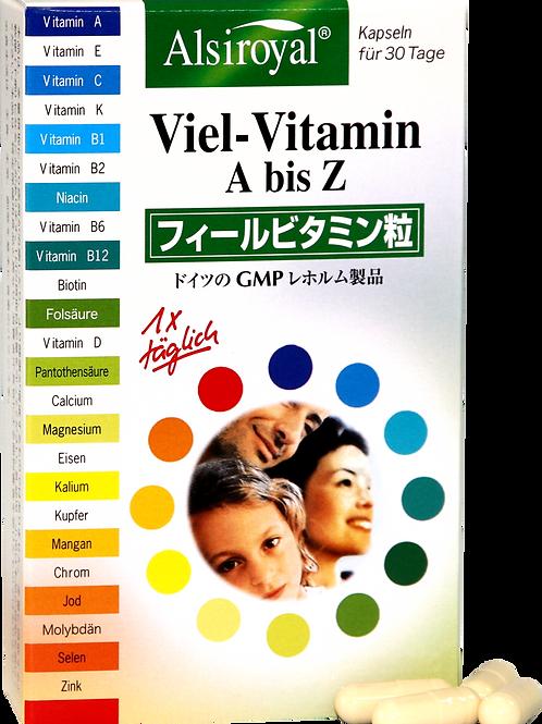 フィールビタミン粒