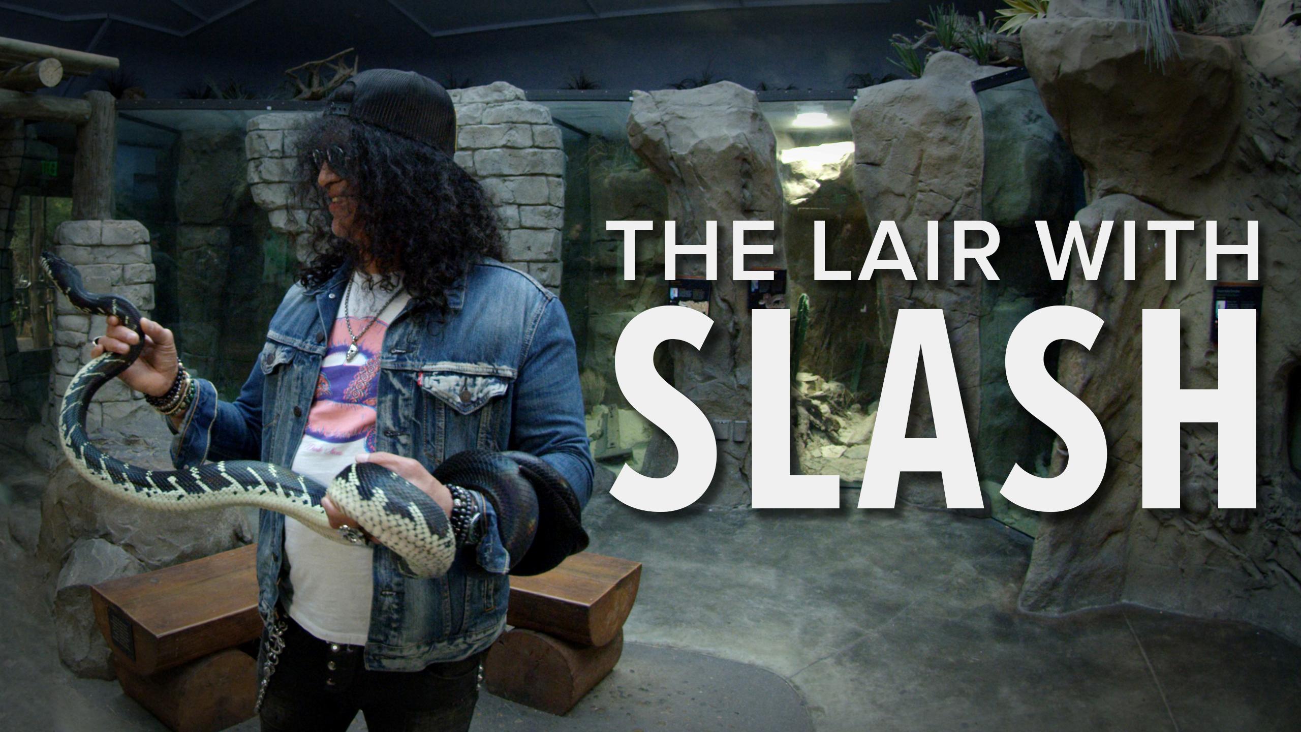 LN_Slash_thumbnails_lair_3