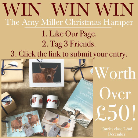 Win a £50 Hamper?