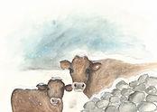 Snowy Cows + Bleed copy.jpg