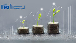 EU Taxonomy: directing the financing of the real economy towards sustainability