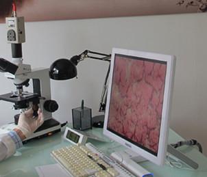 mylinique nutricao idade biologica