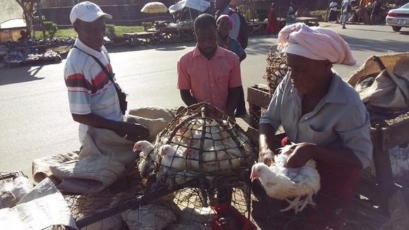 Zakupy w Kabwe