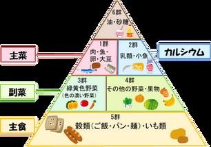 食品ピラミッドのルール