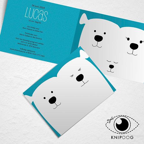Geboortekaartje met ijsberen