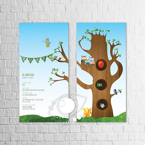 Geboortekaartje met uiltjes in boom