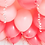 Thumbnail: Pink Champagne Balloon Set