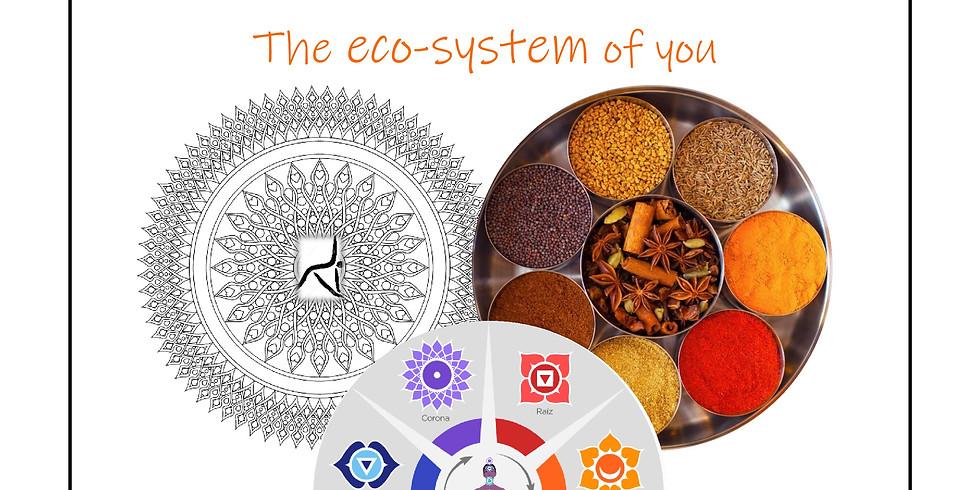 Tú eco-sistema Ayurvédico