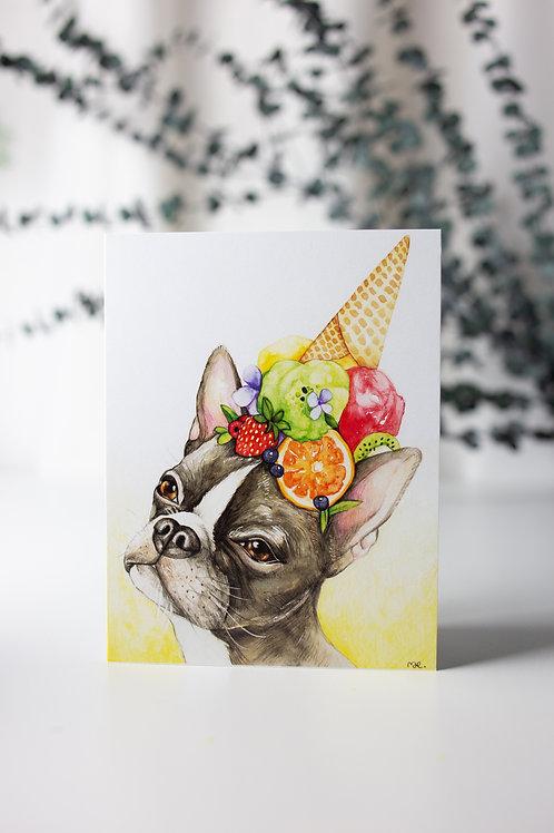 Boston Terrier  - Carte