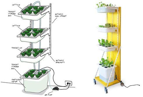 Vertical Farming .jpg