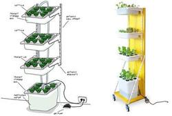 Vertical Farming .jpg