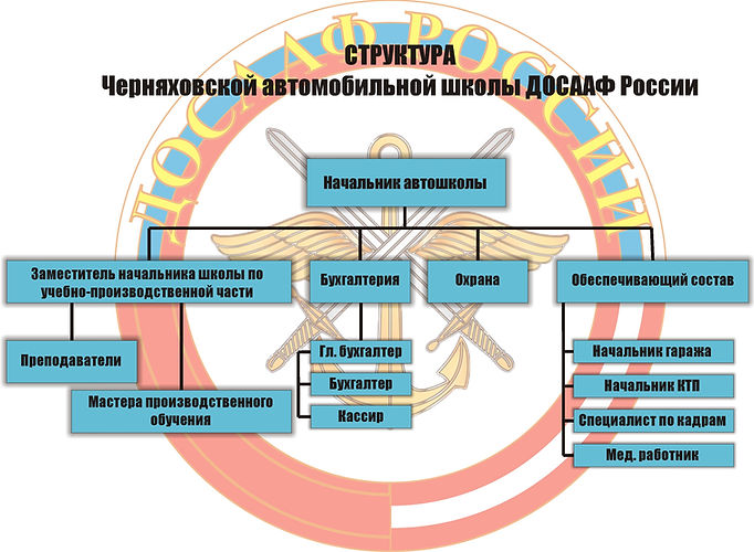 Структура ЧАШ.jpg