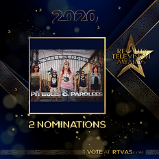 Pit Bulls & Parolees - 2 Nominations - P
