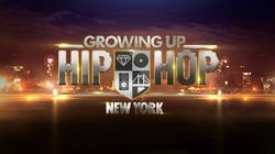 Growing up Hip Hop New York