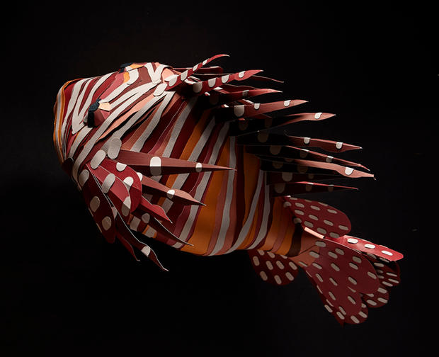 Paper_Animals_ClownFish.jpg